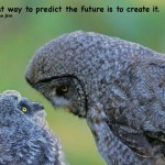 Owls how to predict your future